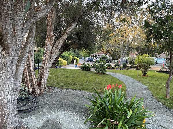 Villa Maria Garden After